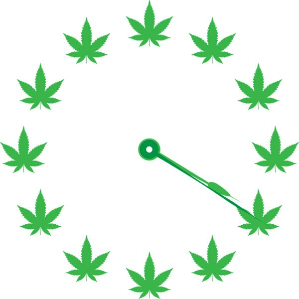Virginia May Legalize Marijuana 3 Years Sooner Than Expected
